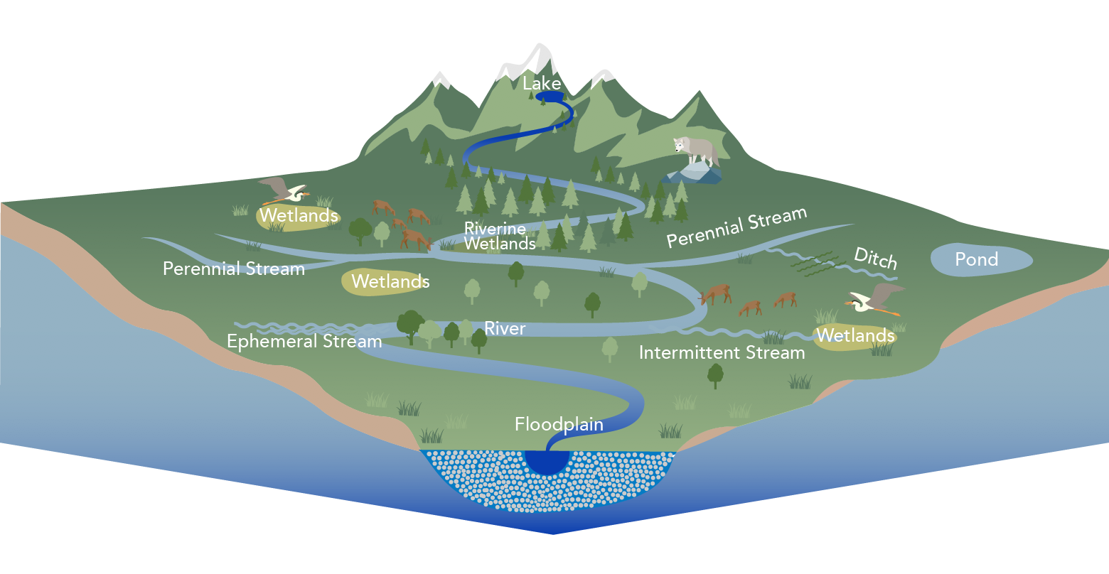 An illustration shows a map of water systems from a lake at the top of a hill to a floodplain in a basin.